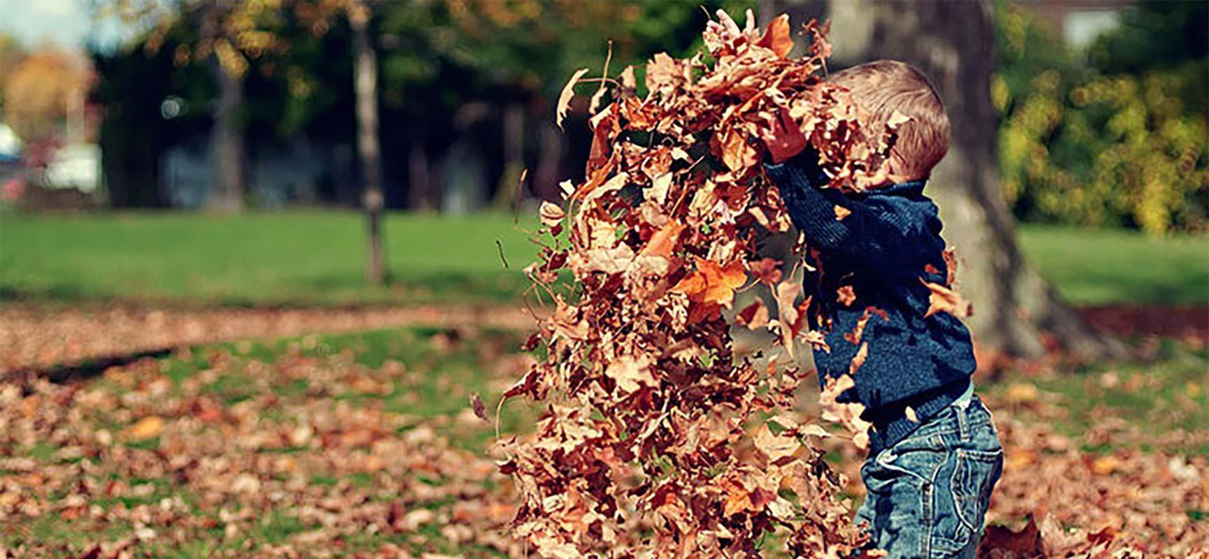 Outdoor activities in autumn