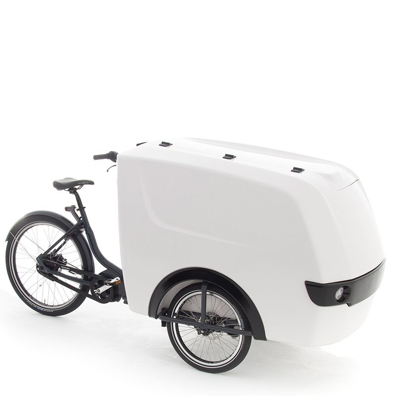 cargo e bike eigen logo