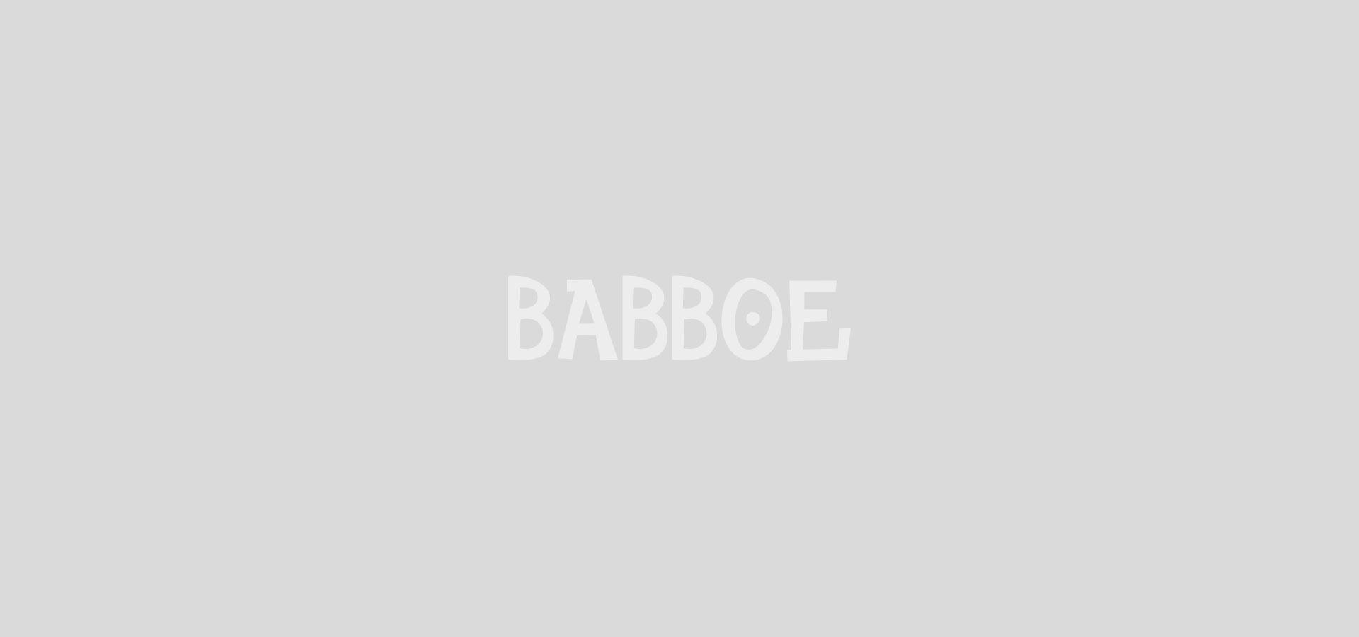 Babboe Carve