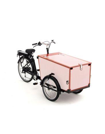 Babboe Pro cargo bike stickers Trike wood 3 sides + lid