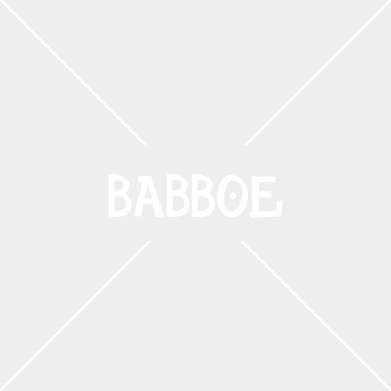 Babboe Big met bevroren remkabels op z'n zijde